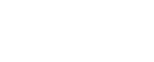 VefeIncoming logo